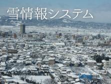 雪情報システム