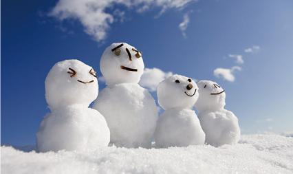 やまがた雪文化マイスター