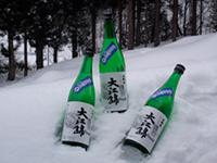 雪室熟成「大江錦」